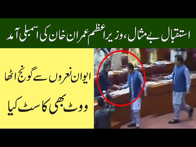 PM Imran Khan Casts Vote For Senate Election
