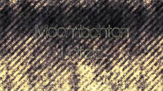 Ice Ice Baby (Van Tek Moombahcore Remix) Thumbnail