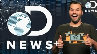 Introducing The All New DNews Plus!