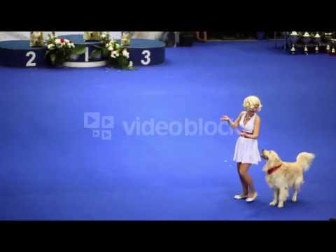 WOMAN DANCE WITH HER DOG OF ATLAS SHEPHERD BREED AT INTERNATIONAL DOG SHOW EURASIA 2011 XKFMKIE9