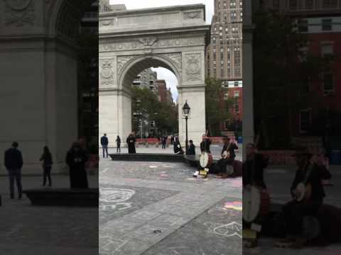 Coyote and Crow October 2016 Washington Square Park New York