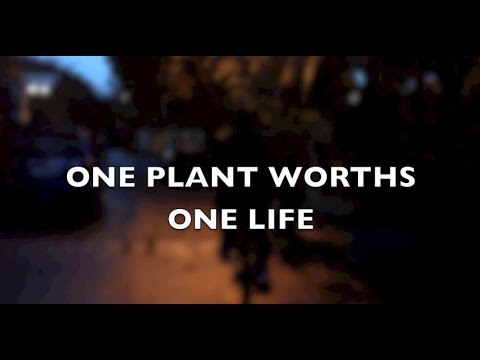 One Plant Worths One Life