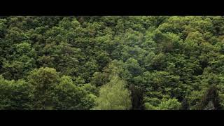 Pantha du Prince - Approach in a Breeze (Official Video)