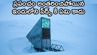 Svalbard Global Seed Vault | what is the main purpose of the svalbard seed vault
