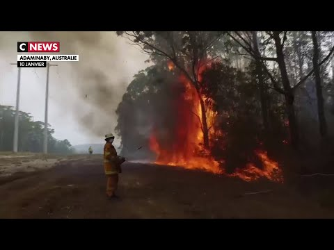 Australie : Les Dernières Images Des Feux