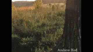 Watch Andrew Bird The Privateers video