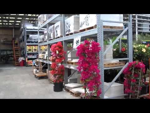 № 542 США Строительный Магазина и Сад  Home Depot Орландо