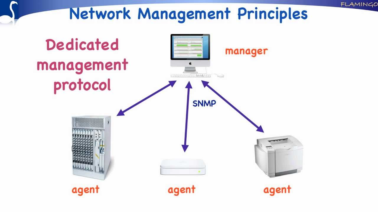 What is network management system? - Definition from WhatIs com