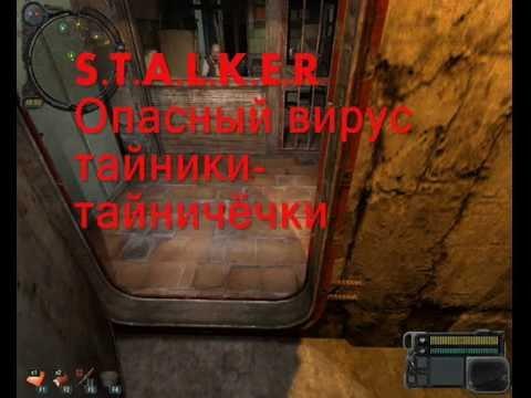 Тайник на элеваторе сталкер опасный вирус где найти конвейер скребковый сп