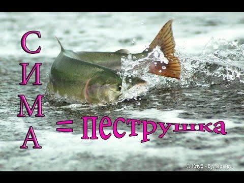 рыбалка в приморском крае на лосося