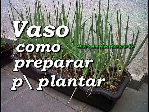... seu vaso para cultivar sua horta em casa ou apartamento - YouTube