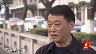 [远方的家]长江行 江尾海头第一镇——浏河镇| CCTV中文国际