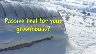 Passive Heating a winter greenhouse using water