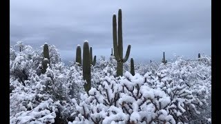 Jet Streams Pinched: Desert Snows USA, Beach Snows Mediterranean (771)