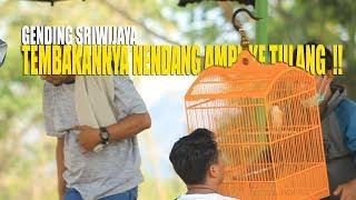 PENDATANG BARU  !! Cendet Gending Sriwijaya FULL TEMBAKAN  !!