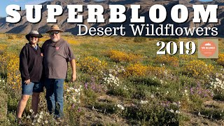 We were hoping that there would be another super bloom in the deser...