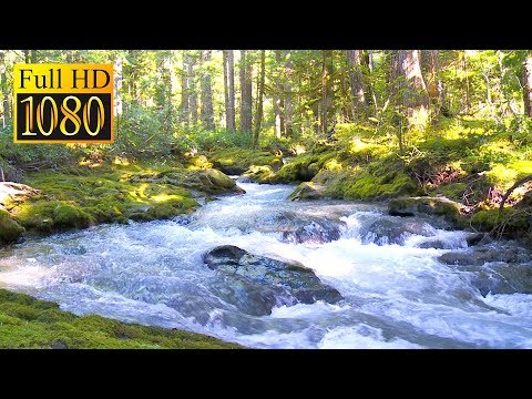 Cascade Stream Background - Relaxing Nature Scenery & Sounds (1080 Full HD)