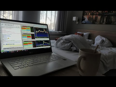 My Office In The Netherlands - Trading And Traveling