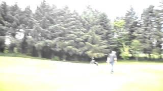Courtown Golf Course.
