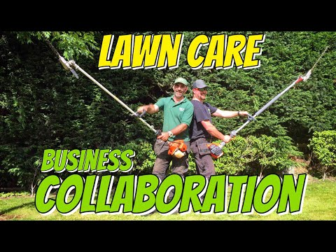 Lawn Care Collaboration Northern Ireland UK