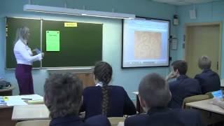 Урок английского языка ВетрюкК.А. 2013