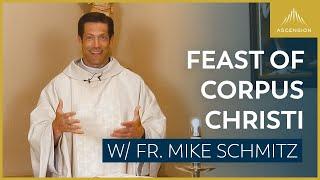 Feast of Corpus Christi – Mass with Fr. Mike Schmitz