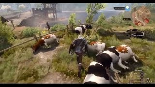 The Witcher 3 - Cow exploit fix and farming Chorts
