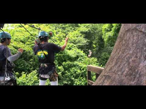 Flying People Thailand - The Flying People by Cable Rides Asia