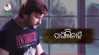 Dukha sathe mu bandhu bandhili Male version Odia sad whatsapp status song lyrics