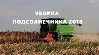 Уборка подсолнечника 2018| Гибриды подсолнечника Латитуда, Константин, Анастасия| АФ Сады Украины