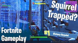 Squirrel Bout to Get Trapped? (Fortnite BRs) w/ Dead Squirrel
