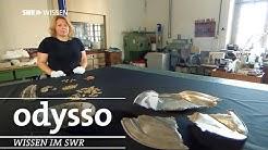 Wem gehört der Schatz? | Odysso – Wissen im SWR