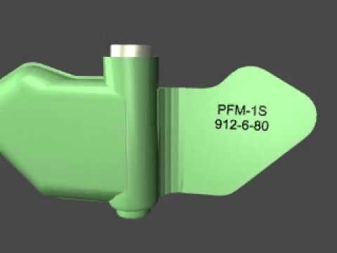PFM 1S
