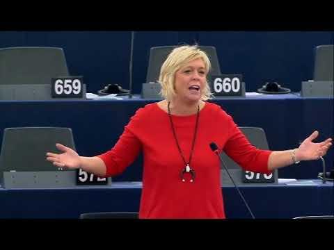 Hilde Vautmans 25 Oct 2017 plenary speech on sexual harassment