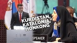 Tynkkynen puhuu demokratiasta parlamentaarikoille ympäri maailman