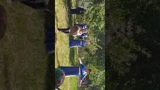 Деревенские развлечения