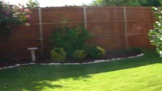 520 Sorenson - Backyard Landscaping