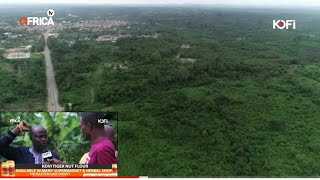 WAO! FREE LANDS IN GHANA 🇬🇭