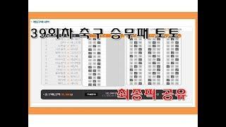 축구 승무패 토토 39회차 최종픽 공유 - 스포츠토토,…