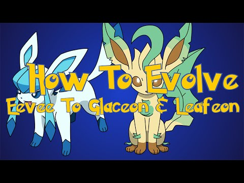 Pokemon Omega Ruby and Alpha Sapphire Tips: How To Evolve Eevee Into Glaceon and Leafeon