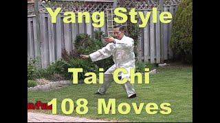 2020, Sifu Paul Ng, Yang Style, Taichi, Demo