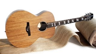 Blackbird El Capitan Ekoa Composite Guitar