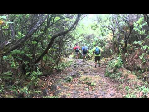 Vereda da Ribeira da Janela (PR15) - Ilha da Madeira