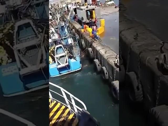 Contaminan mar Peruano arrojando pescado