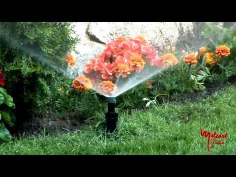 Riego para un jard n perfecto youtube for Matas de jardin