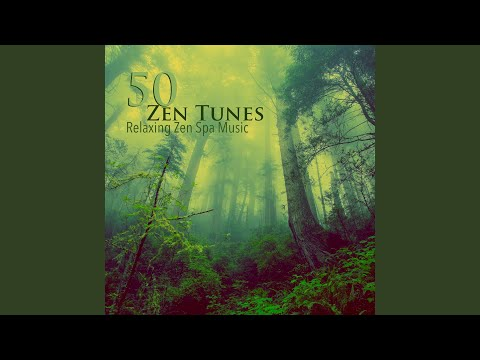 Zen Spa Music