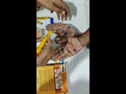 Hand Reflexology Therapy Body Points on Palm