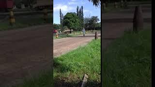 Download Video XXX BOKEP MP3 3GP MP4