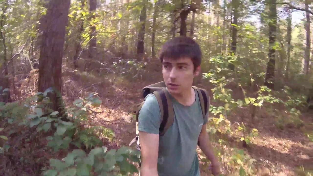 Одиночный поход в лес \ Что случилось с деревьями?