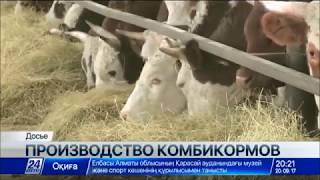 комбікормовий завод ТОВ ''Фірма''АЛ і КС'' Астана